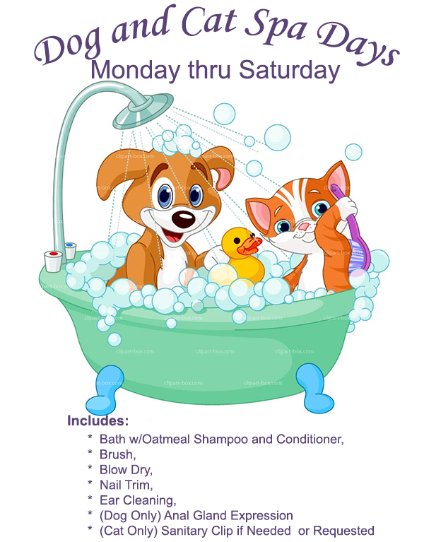 The Family Pet Dog and Cat Spa Days
