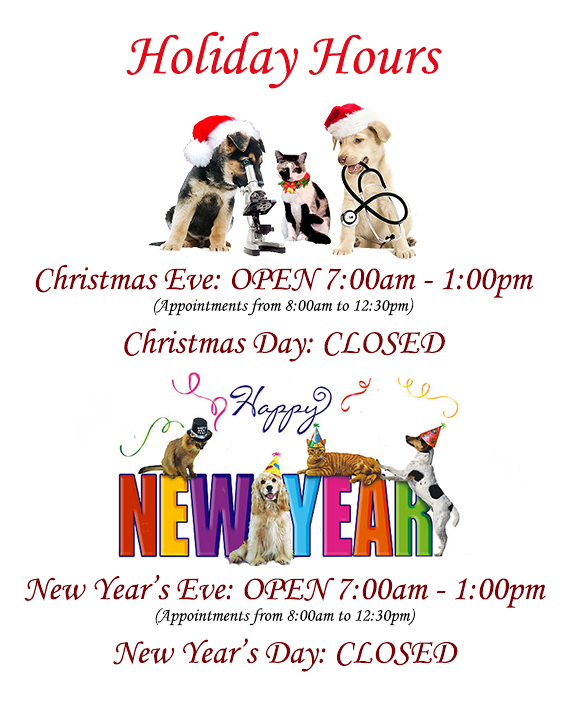 The Family Pet Holiday Hours