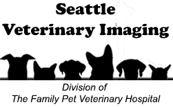 CT scan logo - Seattle Vet Imaging
